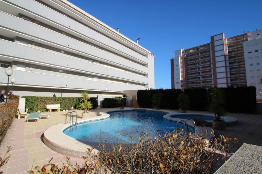 Sale - Apartment - Avenida del puerto - Guardamar del Segura